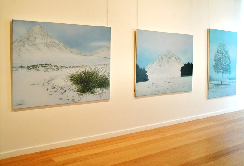 2010 New Paintings, Tim Olsen Gallery, Sydney