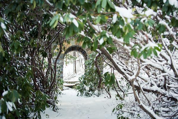02-05-16-winter