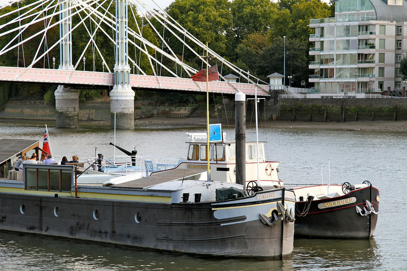 Boats by Albert Bridge