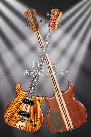 Bass Guitar  Fine Art Photographs in Color Alembic