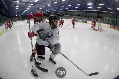 1-13-16 Henry-Sibley v Minneapolis Girls Hockey