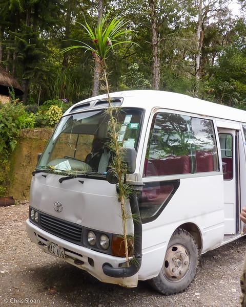 Huli Bus at Ambua Lodge, Papua New Guinea (10-05-2013).jpg