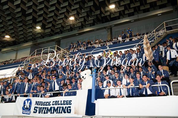Senior GPS Swimming Championships