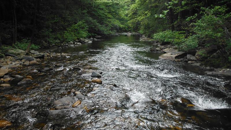 2012-04-22 Conasauga River (38 River Crossings)