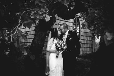 Lush Wedding