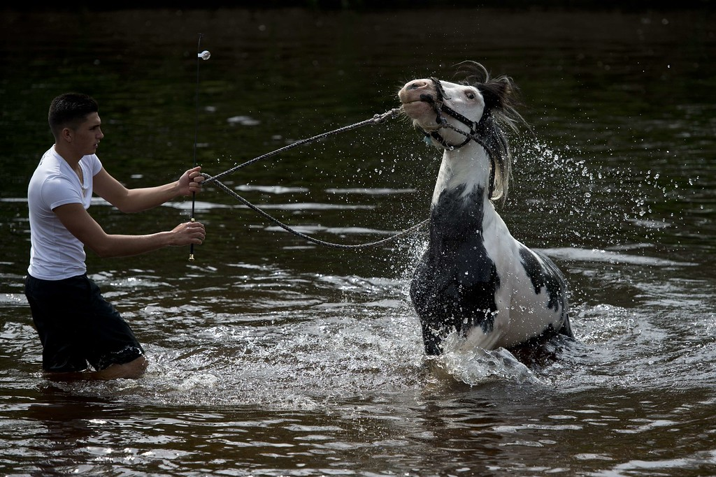 . A man washes a horse in the River Eden on the opening day of the annual Appleby Horse Fair, in the town of Appleby-in-Westmorland, North West England on June 4, 2015. The annual event attracts thousands of travelers from across Britain to gather and buy and sell horses. AFP PHOTO / OLI SCARFF/AFP/Getty Images