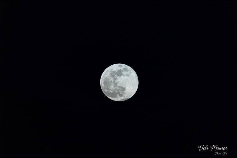 2019-02-19 Mond - 0U5A7398.jpg
