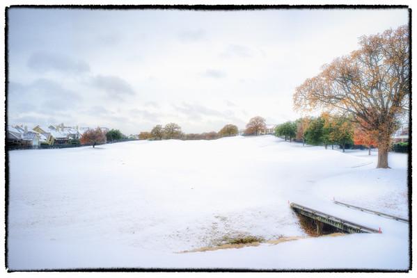 Southlake - Snow