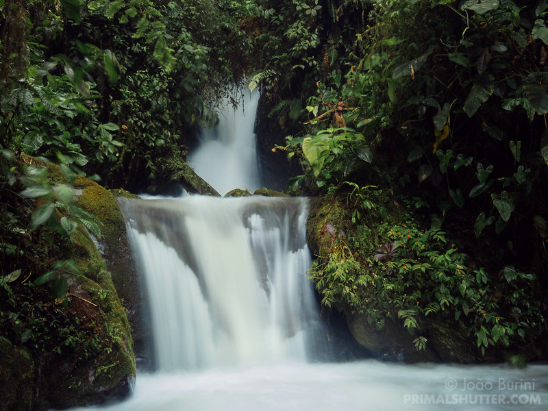 Waterfall in Mindo cloud forest