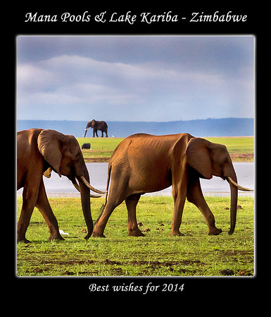 2014 - Kariba & Mana Pools