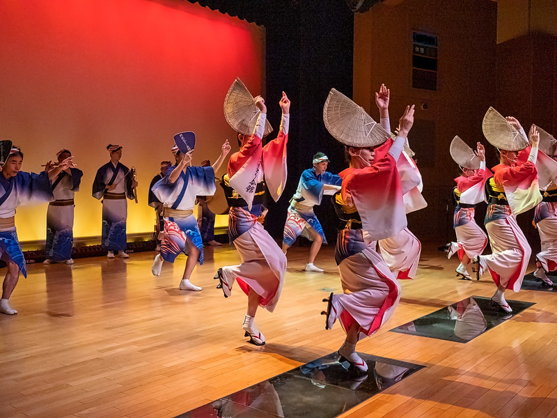 Awa Odori is probably Tokushima's most famous export.