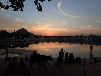 Pushkar Jaipur  '16
