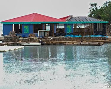 Virgin Gorda Island after Irma, 2017 and 2018