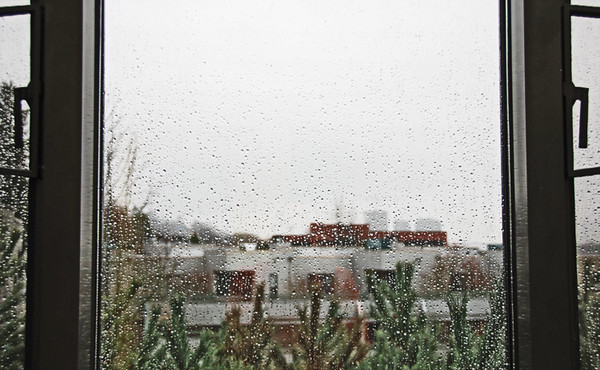 0203 rain.JPG