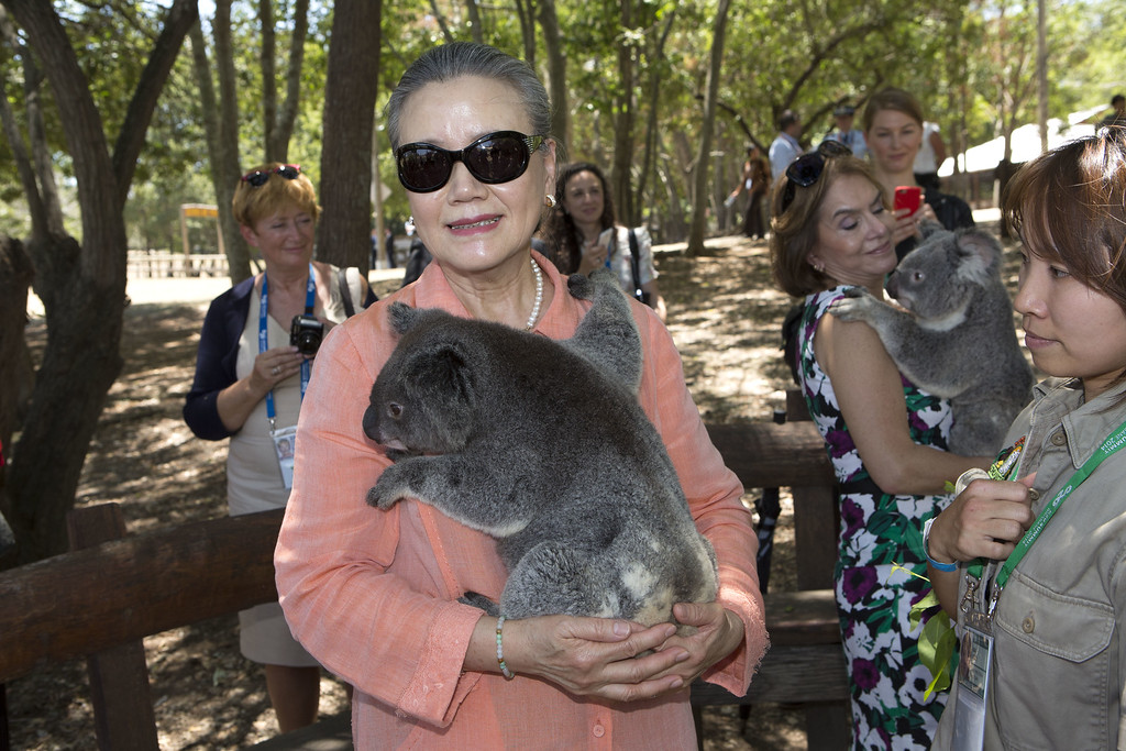 . BRISBANE, AUSTRALIA - NOVEMBER 15: Mrs Ban Soon-Taek, spouse of the Secretary-General of the United Nations cuddles a koala at the Lone Pine Koala Sanctuary, as part of the G20 Leaders\' Spouse programme on November 15, 2014 in Brisbane, Australia. World leaders have gathered in Brisbane for the annual G20 Summit and are expected to discuss economic growth, free trade and climate change as well as pressing issues including the situation in Ukraine and the Ebola crisis.  (Photo by Penny Bradfield/G20 Australia via Getty Images)