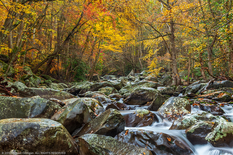 Fall Colors Along Little Pigeon River