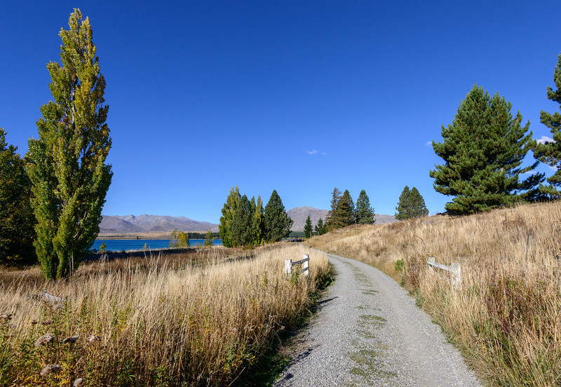 NewZealand-20140327-1347.jpg
