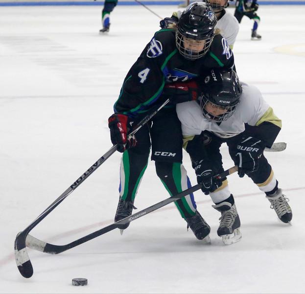 2016-Feb_12-Hockey-JPM1298.jpg