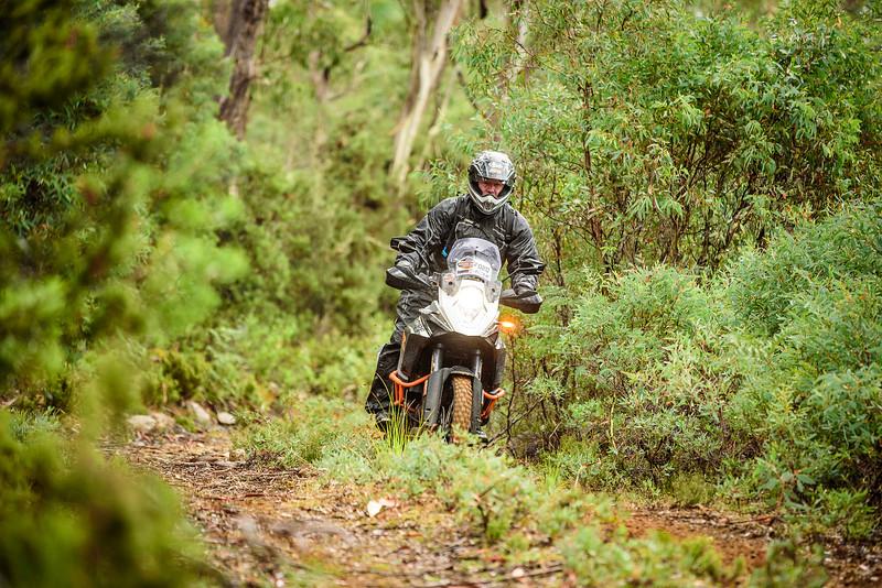 2019 KTM Australia Adventure Rallye (451).jpg