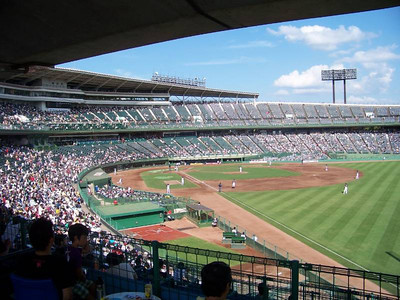Buffaloes - Kobe Stadium