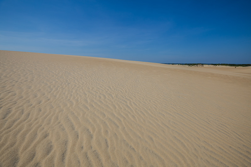 Jockey Ridge State Park - Nags Head, NC