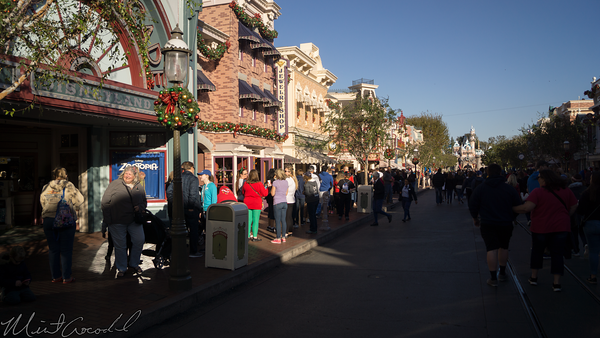 Disneyland Resort, Disneyland, Main Street USA, Candy Canes, Candy Cane, Candy, Cane