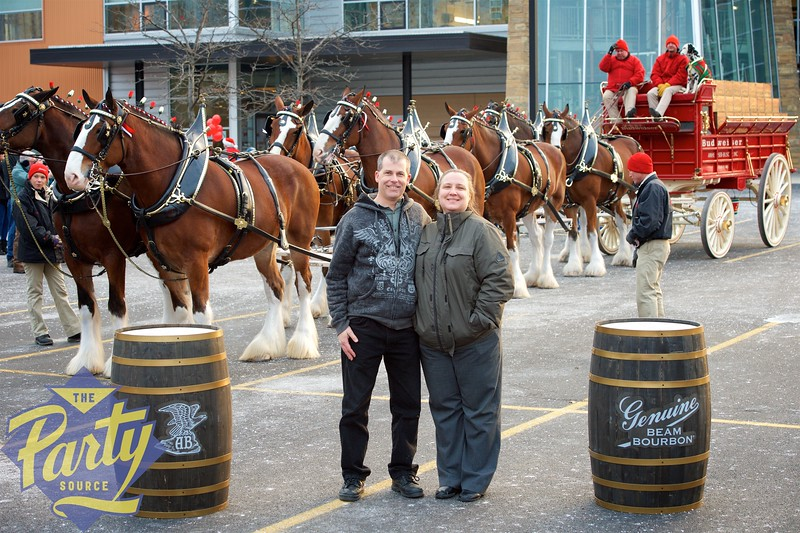 Clydesdale Portraits 108.jpg