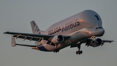 Airbus Beluga 1