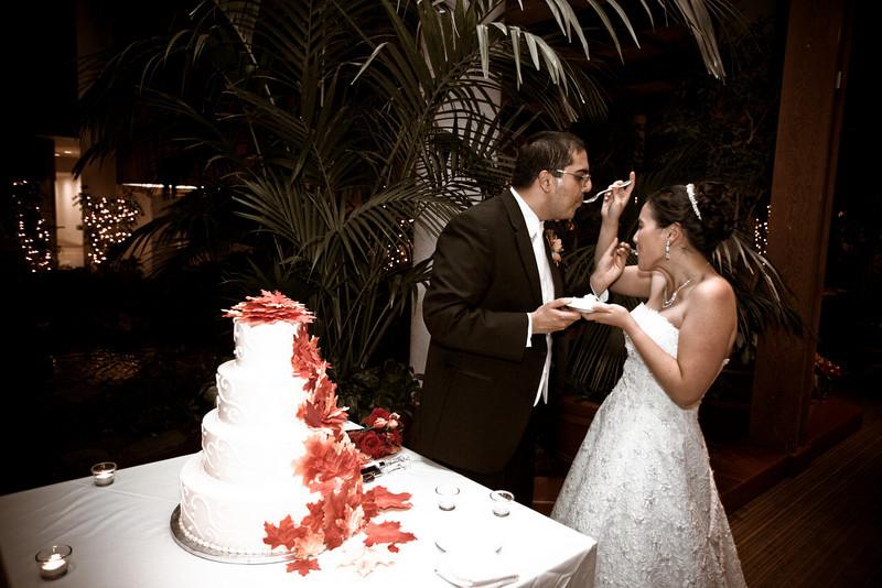 Emmalynne_Kaushik_Wedding-1211.jpg