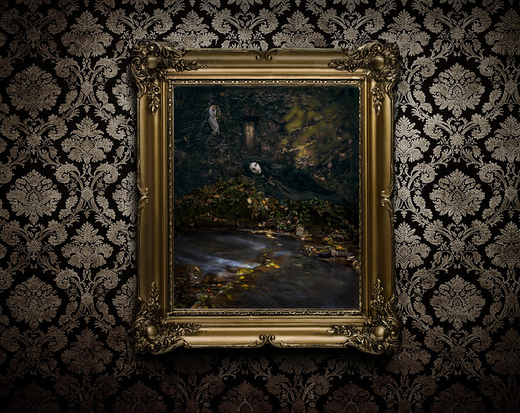 """""""Who Doesn't Love A Lost Cause..."""" in a  thick  ornate gold frame"""