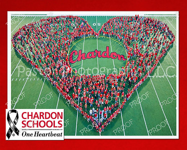 Chardon Heartbeat 8x10 16x20