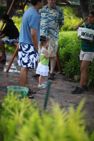 Kauai_D4_AM 123.jpg