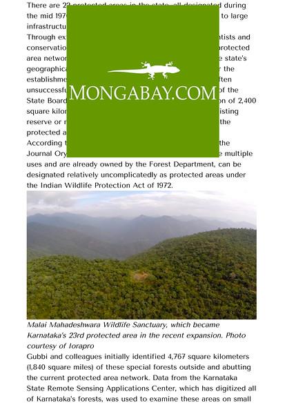 Mongabay-2.jpg