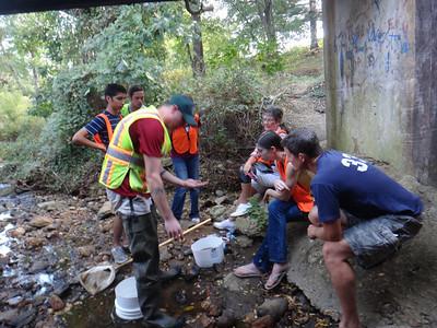 10.5.13 CSI (Creek Scene Investigation) Workshop at Herbert Run