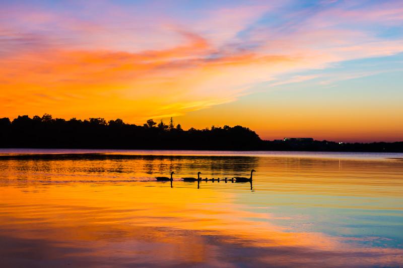 Lake Quannapowitt-58.jpg