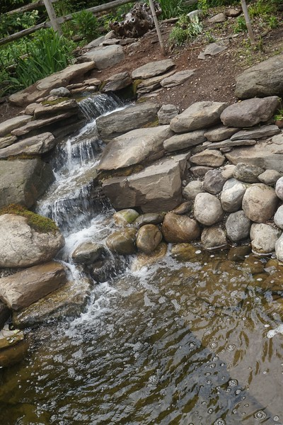 Reeves-Reed Arboretum 28.jpg