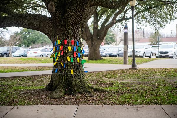 M20081- Wishing Tree