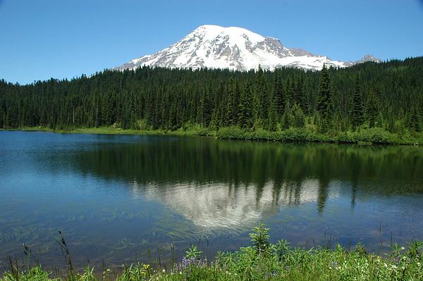Mt. Rainier National Park