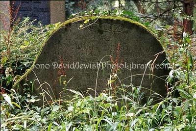 GERMANY, Heidelberg. Jewish Cemetery. (2006)