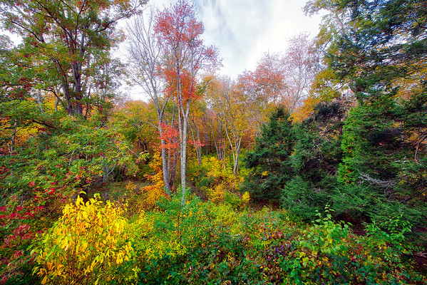 Fall in Connecticut -  Oct 2019