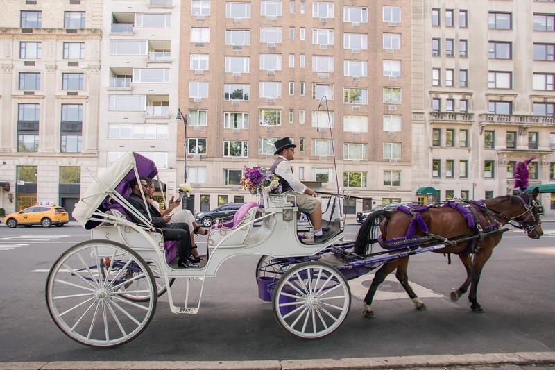 Aisha & Christopher Central Park Wedding-18.jpg