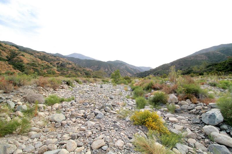 32633-Trabuco-Canyon-Rd-Mitchell-East-Trabuco-Canyon_53.JPG