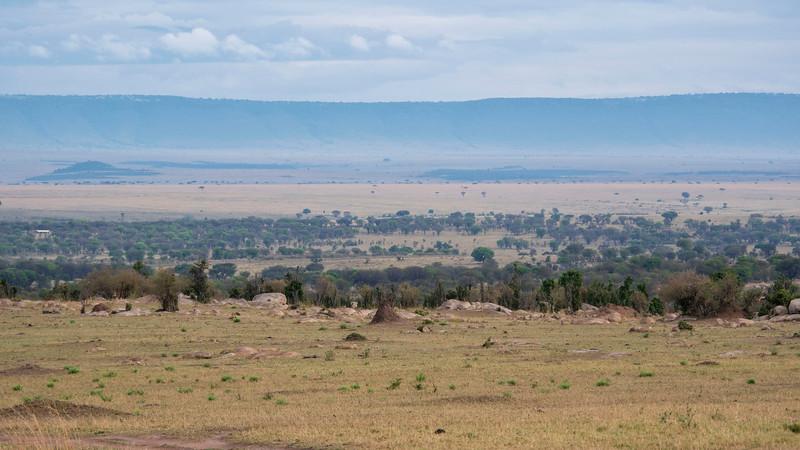 Tanzania-Serengeti-National-Park-Safari-09.jpg