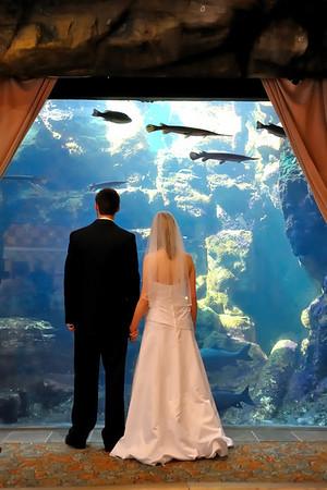 Colleen & Jeremy - Wedding