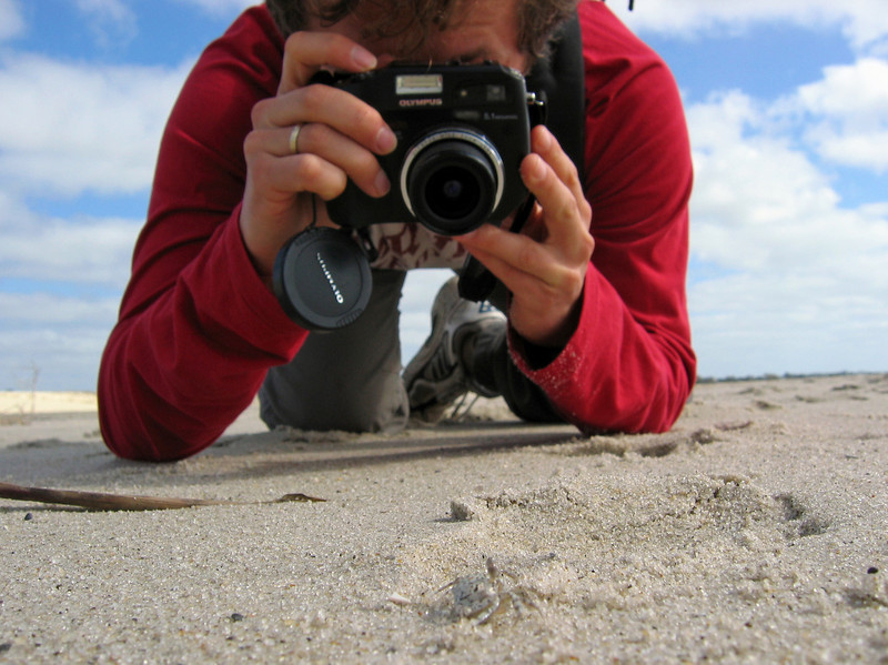 Yura photographs crab in Cape May 2.jpg