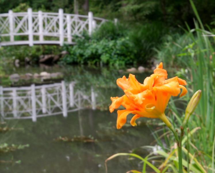 Sayen bridge.jpg