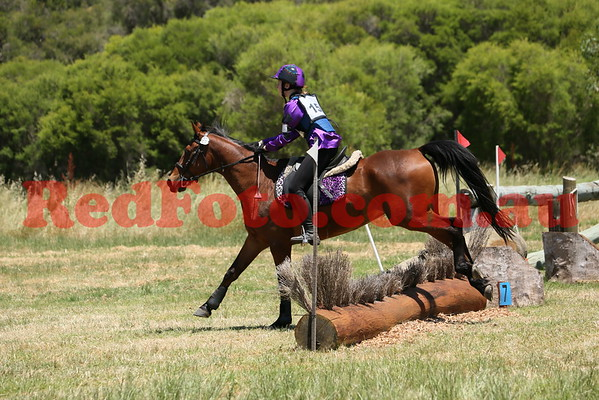 2014 11 09 Swan Valley Hunter Trials 45cm 12yrs and Under
