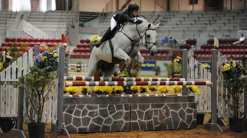 Horse show (45).jpg