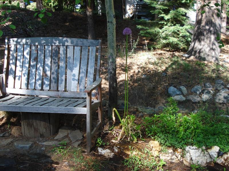 Bench 06-06-2015