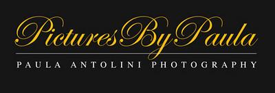 picturesbypaulalogowebsiteblack15F